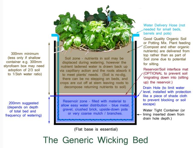 wicking-bed-copy