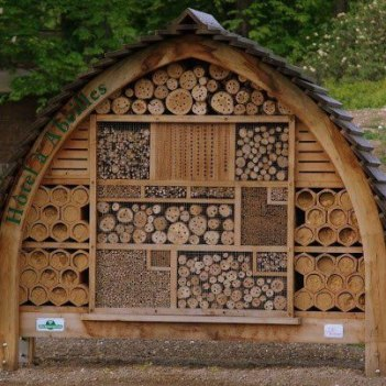 Image retrieved from http://www.rootsimple.com/2012/12/picture-sundays-a-native-bee-hotel/