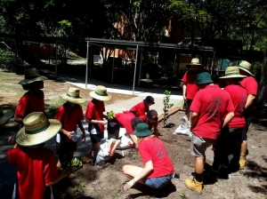 bunnings-and-students-31-jan-2016