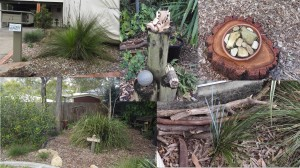 Leanne garden - 9 Aug 2016