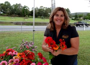 Debbie Needham - Zinnias - 10 May 2017