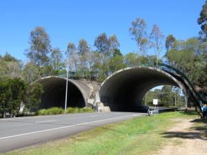Compton Road fauna bridge lr