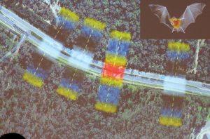 Micro-bat corridor use lr