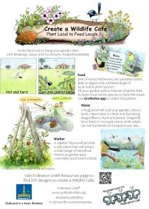 Create a Wildlife Cafe
