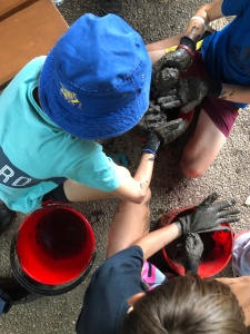 Mud Puddling - 16 April 2019