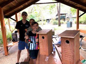 New bird homes - 16 April 2019